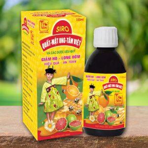 Siro ho quất mật ong Tâm Việt dạng chai